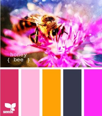 HoneyBee600_новый размер