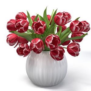 Red Tulips In The Vase.jpg16fd7ecc-b19c-4c11-919a-ead4b58ebdbfLarge_новый размер