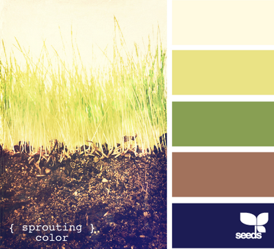SproutingColor610