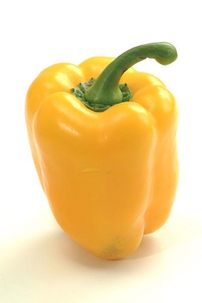 tajagroYellow-Pepper