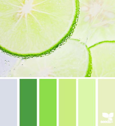 CitrusColor