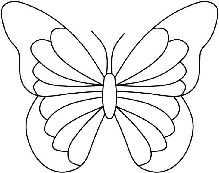 4butterfly12
