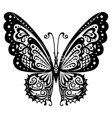 butterfly-vector-659266