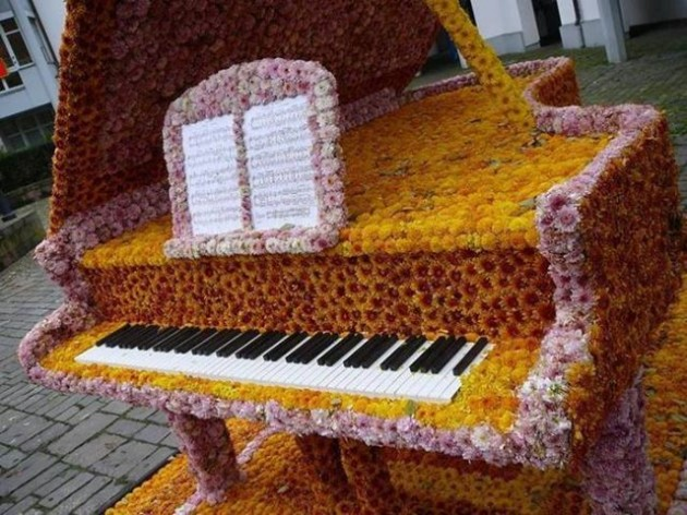 theblogfarm._com_chrysanthemum-festivals-from-around-the-world_-630x472