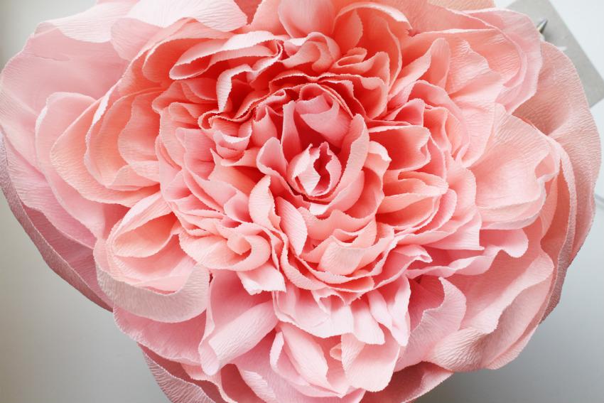 Гигантские розы из креповой бумаги своими руками мастер класс 99