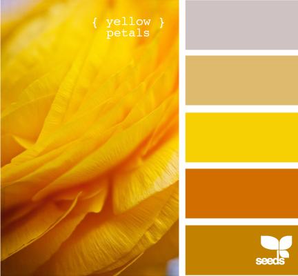 YellowPetals615