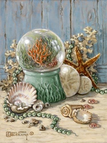 SeaShellCollection4