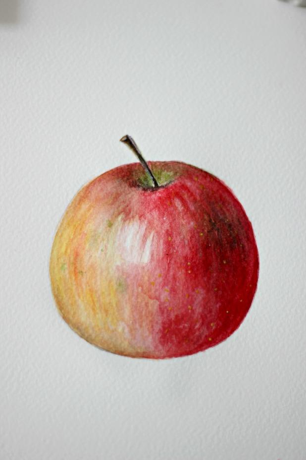 Гуашью поэтапно яблоко