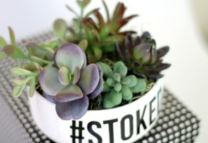 simple-succulent-planter-3