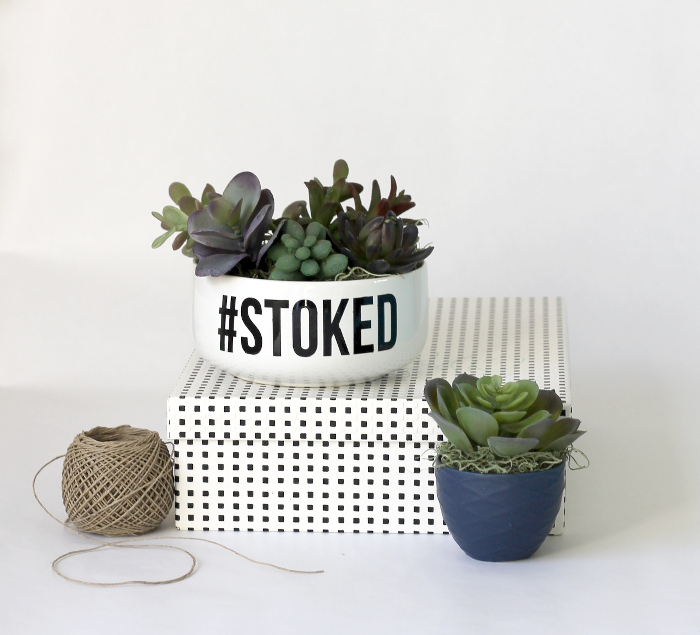 simple-succulent-planter2