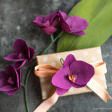 Double_Sided_Crepe_Orchid