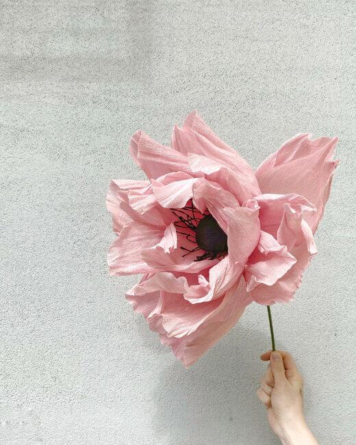 Cách làm hoa anh túc khổng lồ